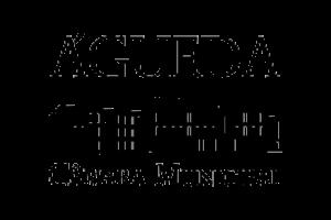 Logo Ilhavo 300x200 copy